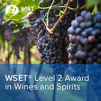 WSET Level 2 In Wine & Spirts – The Perfect Beginner Course